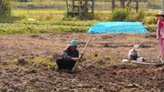 Family working in a private field in Myanmar Stock Footage