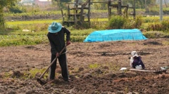 Family works in a private field in Myanmar 3 Stock Footage