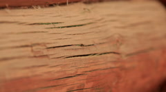 The old log all the cracks. Shallow depth of field. Concept of time and age. - stock footage