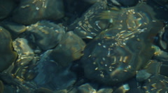 Texture of the water Stock Footage