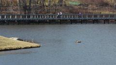 Lake Boardwalk Scene Long Shot - stock footage
