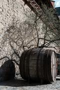 Leafless tree and big wooden barrel at the defensive wall in Hamburg Stock Photos