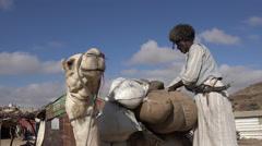 African trader loading camel in african village - Sudan desert Stock Footage