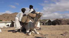 Two african traders loading camel in african village - Sudan desert Stock Footage
