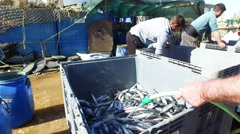 Fisher men at work in the harbor from Lagos Portugal Stock Footage