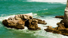Coastline Rocks Time-Lapse Stock Footage