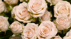 a Large Bouquet of White Roses, - stock footage