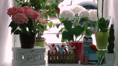 Decoration Windowsill Flowers in Pots and Toys - stock footage
