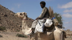 African arabic man sit on a camel in the desert - Sudan Stock Footage