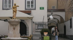 Young lady passing by Fisherman's Square in Ljubljana Stock Footage