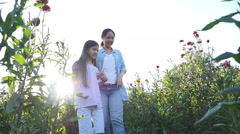 Happy Asian girl walking with her mother in the flower field with sunlight, Slow - stock footage