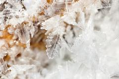 Frosty original pattern. The ice crystals photographed close up. Stock Photos
