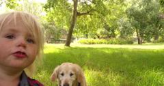 Happy child pets a labrador retriever dog at park Stock Footage