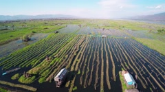 Flying over floating gardens on Inle Lake 4k Stock Footage