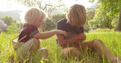 Siblings tenderly taking care of a bunny at the park - stock footage