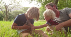 Father and his boys with bunny in park - stock footage