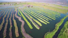 Flying up over floating gardens on Inle Lake 4k Stock Footage