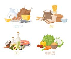 Healthy nutrition, proteins fats carbohydrates balanced diet, cooking, culinary Stock Illustration