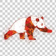 Red, fiery panda bear - stock illustration
