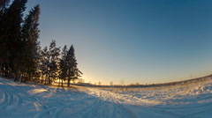Quiet Ride on the Winter Road to Pine Trees at Sunset Stock Footage