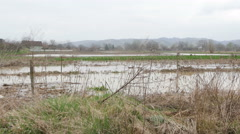 Scenic of destroyed fields at the countryside after floods,pan right,wide angle. Stock Footage