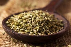 raw organic fennel Seed - stock photo