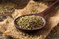 Raw organic fennel Seed Stock Photos