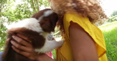 Close up of family enjoying new adorable fluffy border collie - stock footage