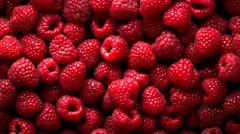 Raspberry fruit background Stock Footage