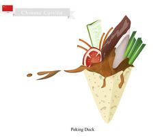 Peking Duck, Famous Duck Dish From Beijing - stock illustration