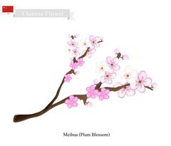 Meihua or Plum Blossom, A Popular Flower in China Piirros