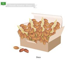 Dates Fruit, A Popular Fruit in Saudi Arabia Stock Illustration