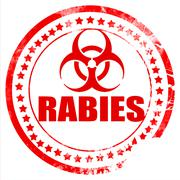 Rabies virus concept background Stock Illustration