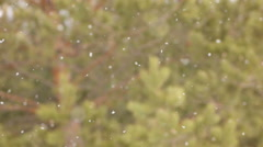 Snow falling. Snowflakes with selective focus. Winter design concept. - stock footage