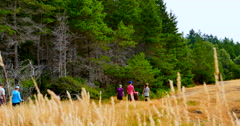 4K Tall Grass, Family Walks down path in Park, Hornby Island Stock Footage