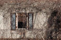 Architectural Decay Stock Photos