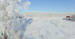 4K Aerial: morning in a winter forest.. Frozen Birch tree with frost at winter - stock footage