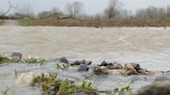 Turbulent water flow, flooded road, low angle view,floods,close up. Stock Footage