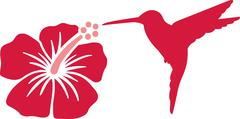 Stock Illustration of Hummingbird with hibiscus flower