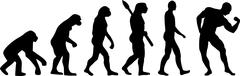 Stock Illustration of Evolution Muscle