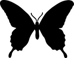 Real Butterfly Silhouette - stock illustration