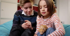 Littel girl and her elder brother play with their pet guinea pig. Stock Footage