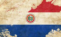 Paraguay flag Stock Illustration