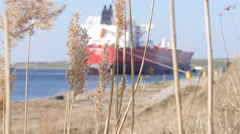 Merchant cargo vessel is moored at the bollards Stock Footage