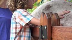Boy And Sister Petting Horse Stock Footage