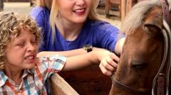 Stock Video Footage of Siblings Admiring Farm Horse