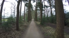 Cycling fast over forest path with trees on left right side first person view 4k Stock Footage