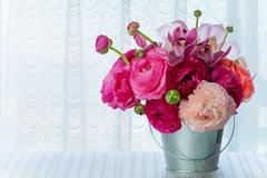 Bouquet of ranunculus on windowsill with curtains and light from window. Stock Photos