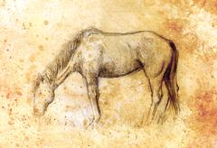 Draw pencil horse on old paper, vintage paper and old structure with color spots - stock illustration