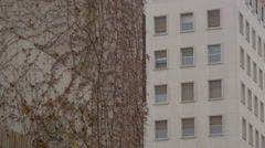 Wall with climbing plant and an apartment building in Ljubljana Stock Footage